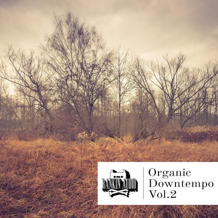 Rankin Audio Organic Downtempo Vol 2