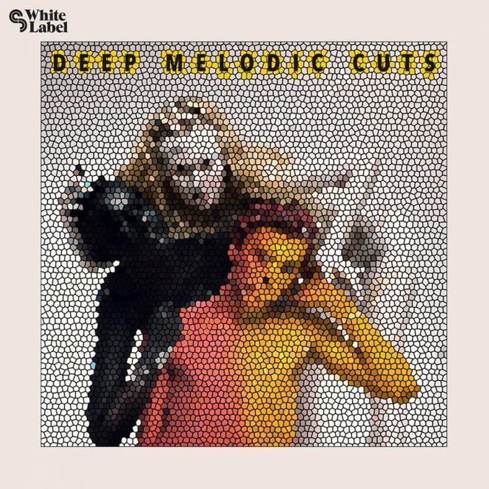 Sample Magic Deep Melodic Cuts