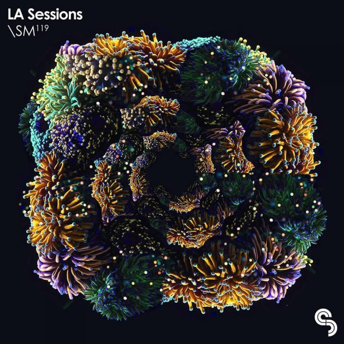 Sample Magic LA Sessions