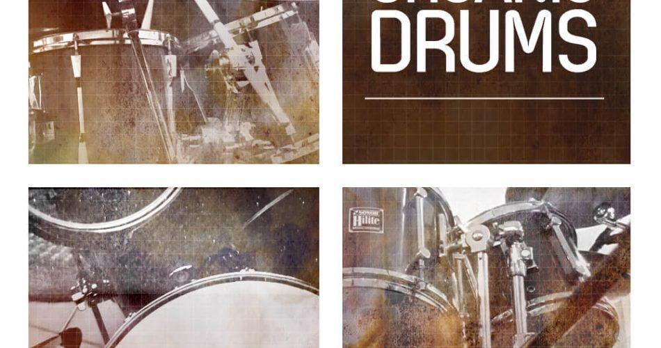 RV Samplepacks Organic Drums