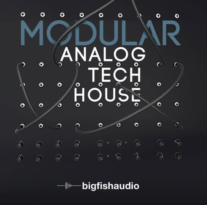 Big Fish Audio Modular Analog Tech House