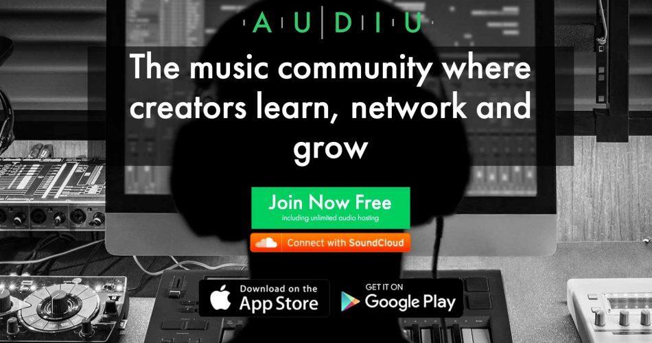 Audiu landing page