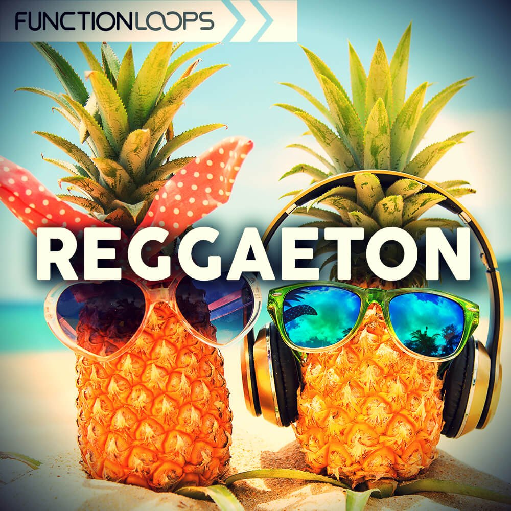 Function Loops   Reggaeton
