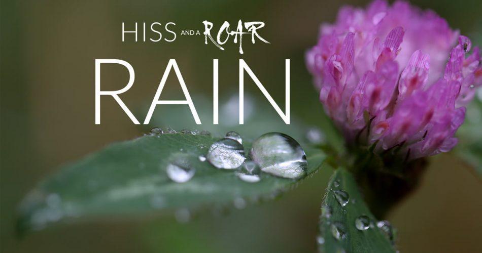 HISS and a ROAR Rain