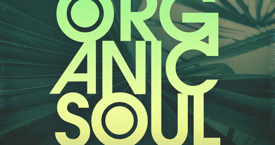 Looptone Lack of Afro Organic Soul