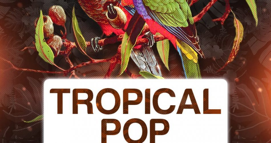 Singomakers Tropical Pop