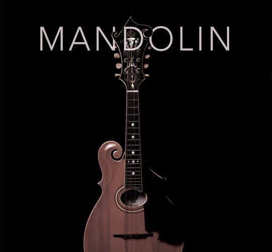 8Dio Productions Advanced Guitar Series Mandolin