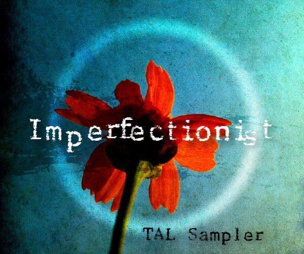 Empty Vessel Imperfectionist for TAL Sampler