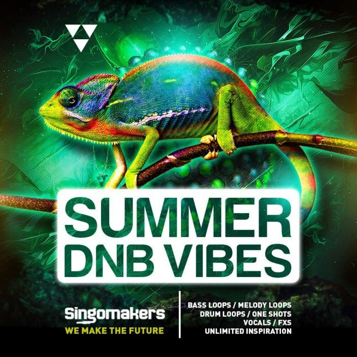 Singomakers Summer DnB Vibes