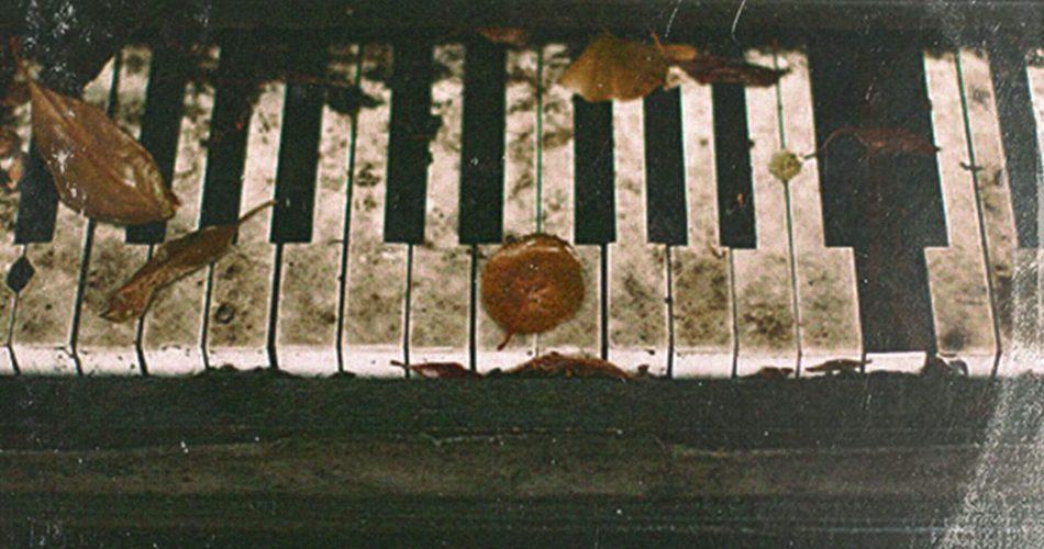 Noiiz Tropics Experimental Pianos