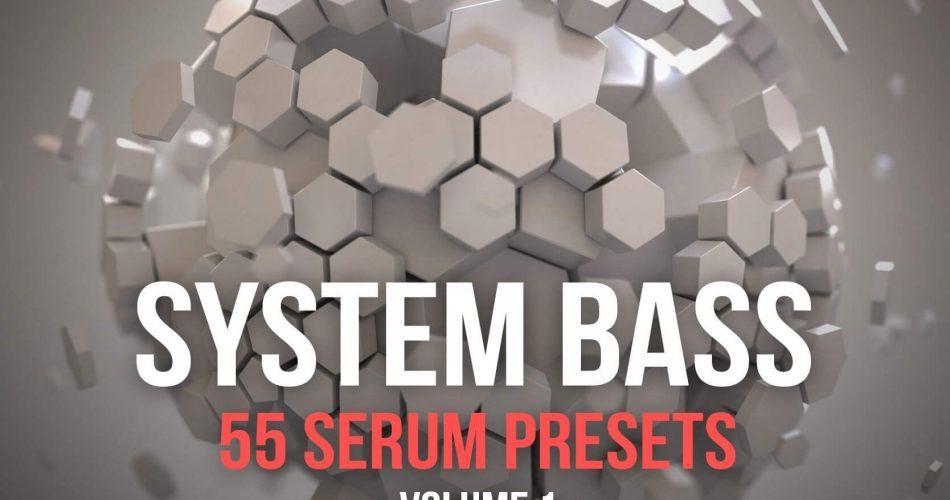 Bicubic Audio System Bass 1