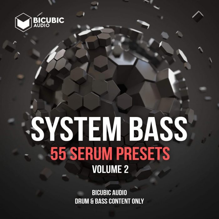 Bicubic Audio System Bass 2