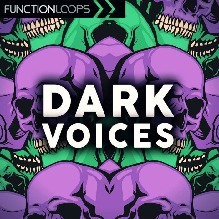 Function Loops   Dark Voices