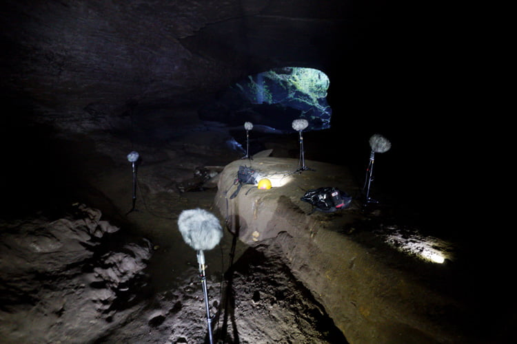Hiss And A Roar Releases Cave Ambiences Amp Electric Golf