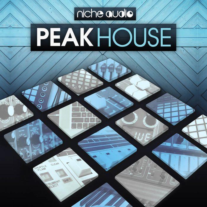 Niche Audio Peak House