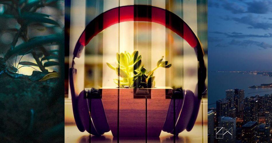 Noiiz Primate Borilla Ethereal Music