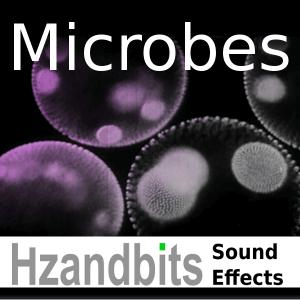 Hzandbits Microbes