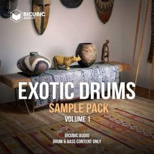 Bicubic Audio Exotic Drums