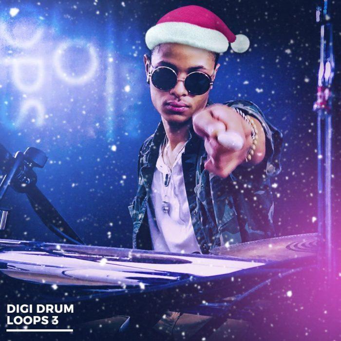 Diginoiz   Digi Drum Loops 3