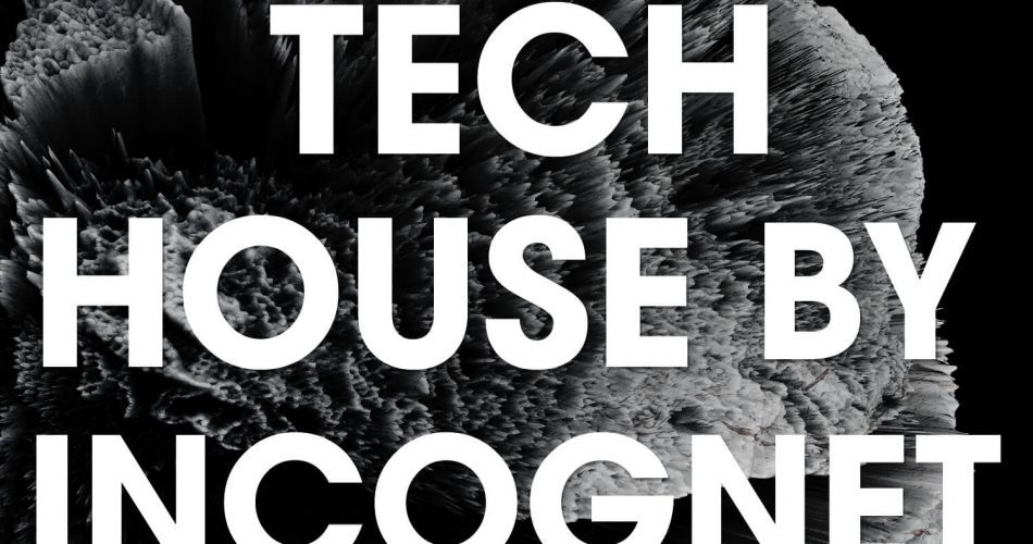 Incognet Tech House by Incognet