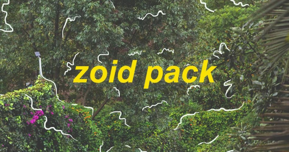 Splice Sounds Ramzoid Zoid Pack