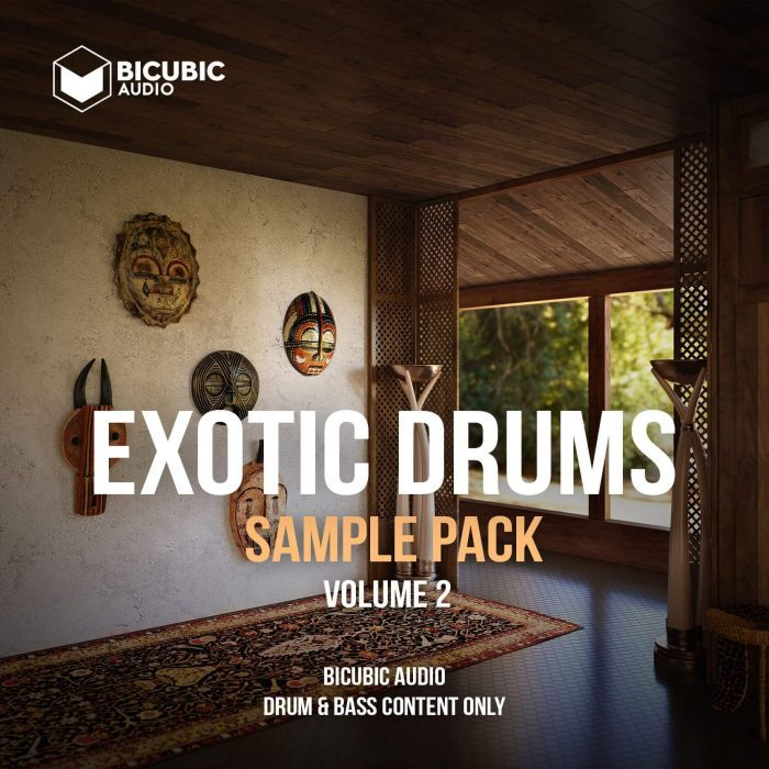 Bicubic Audio Exotic Drums 2