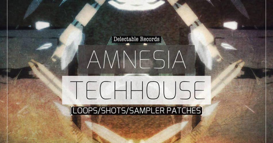 Delectable Records Amnesia Techhouse