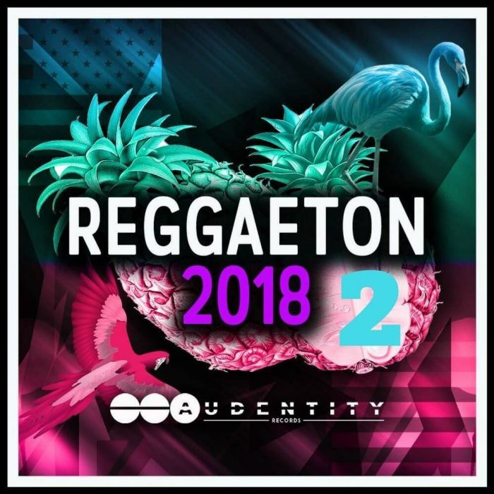 Audentity Records Releases Future Bass Amp Pop Reggaeton