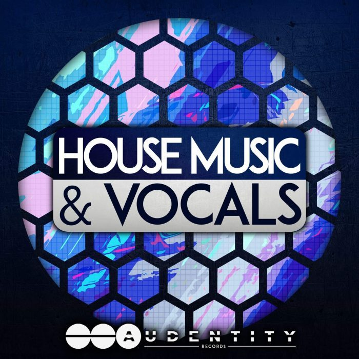 Audentity records releases wonky riddim and house music for House music records