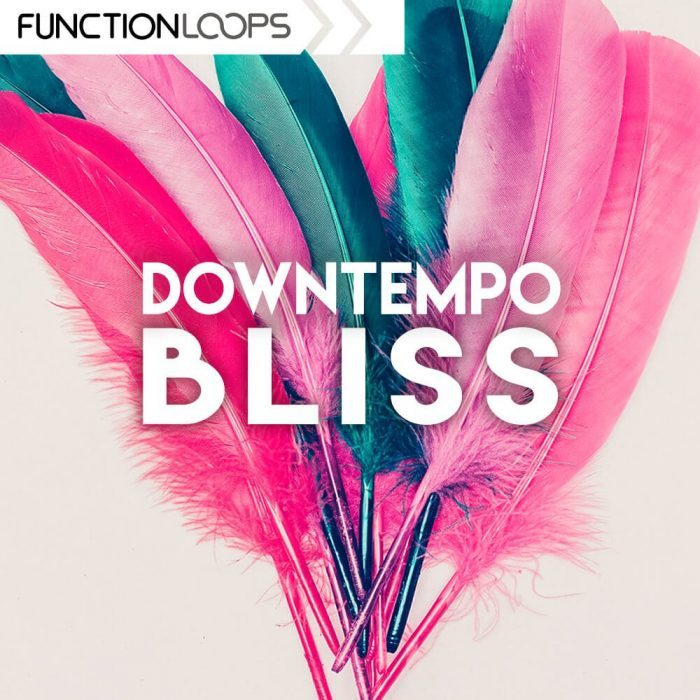 Function Loops Downtempo Bliss