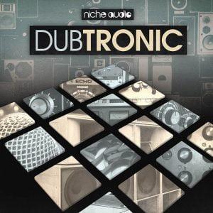 Niche Audio Dubtronic