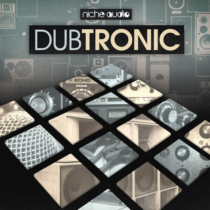 Niche Audio Dubtronic