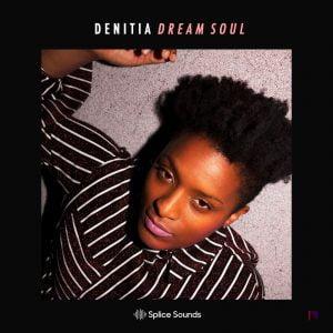 Splice Sounds Denitia Dream Soul