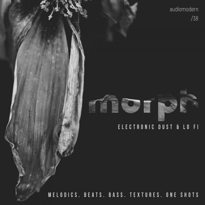 Audiomodern Morph