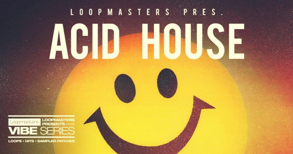 Loopmasters Vibes Series - Acid House