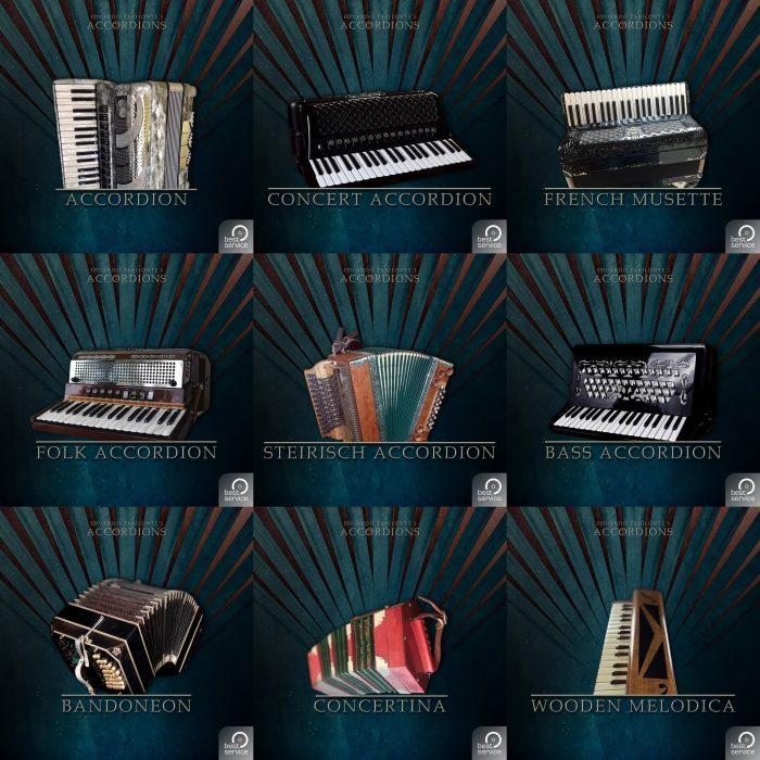 Best Service Accordions 2 single instruments