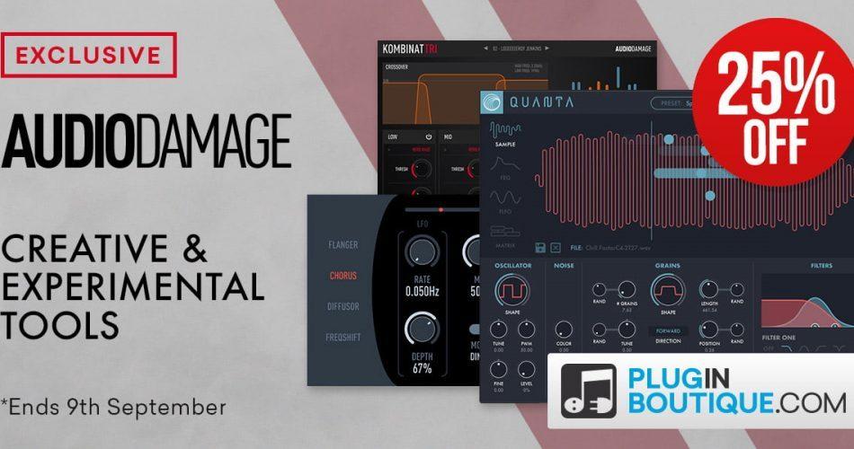 PIB Audio Damage intro