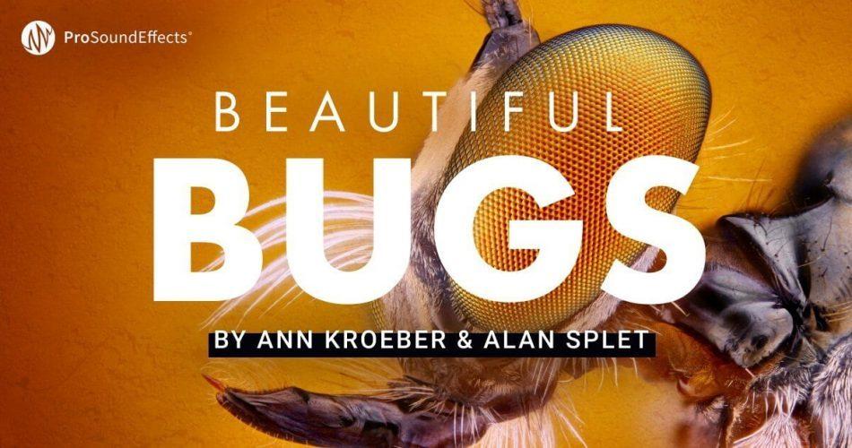 Pro Sound Effects Beautiful Bugs