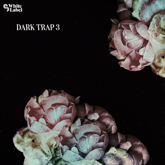 Sample Magic Dark Trap 3
