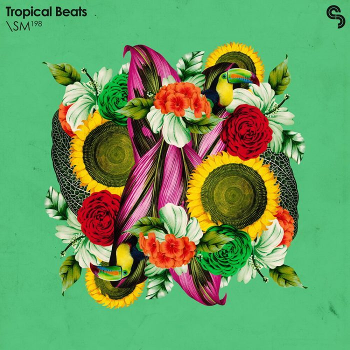 Sample Magic Tropical Beats