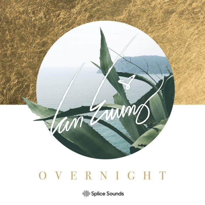 Splice Sounds Ian Ewing Overnight