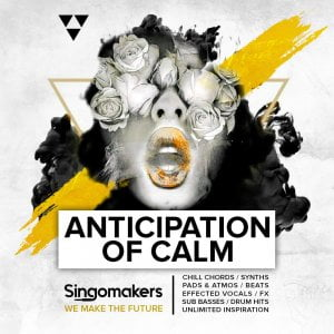 Singomakers Anticipation Of Calm