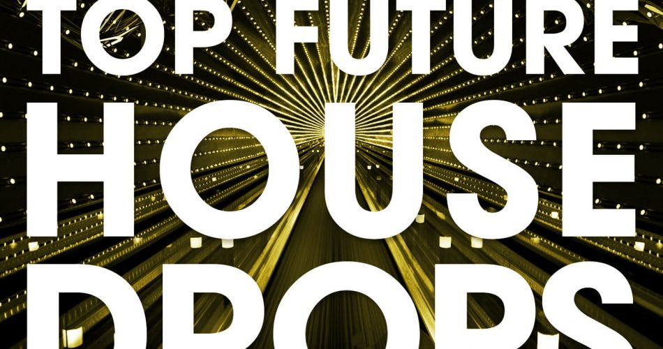 Incognet Top Future House Drops