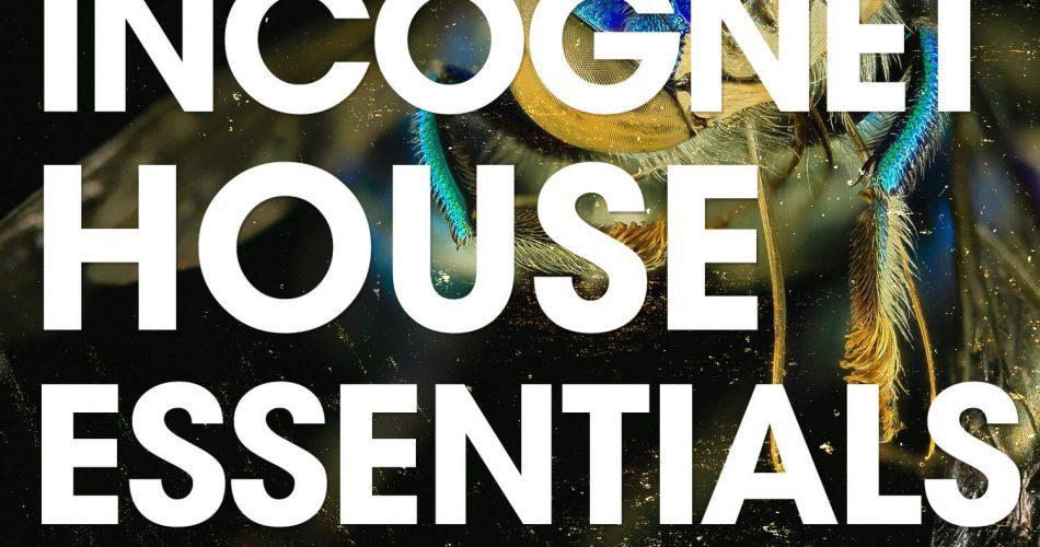 Incognet House Essential Vol 2