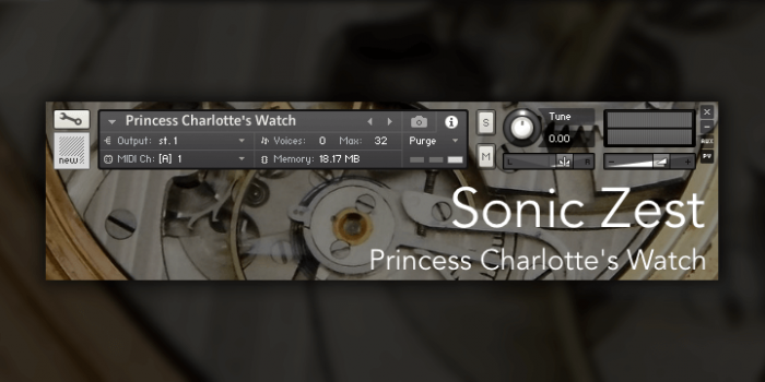 Sonic Zest Princess Charlotte's Watch