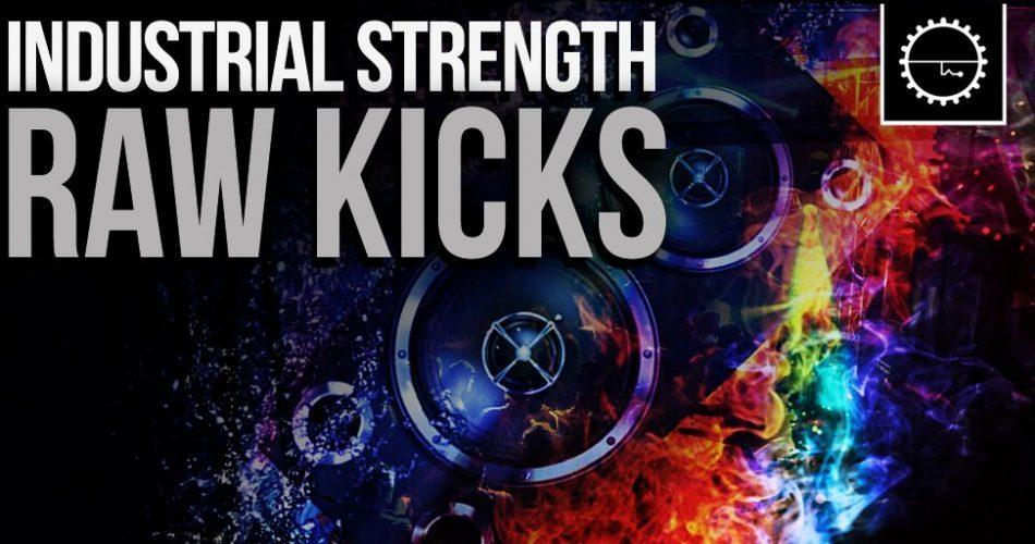Industrial Strength Raw Kicks