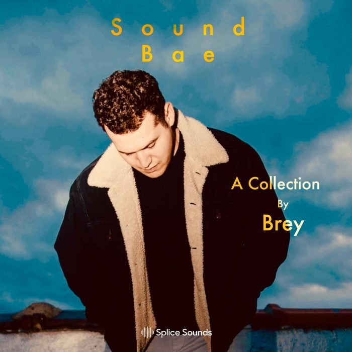 Splice Sounds Brey Sound Bae