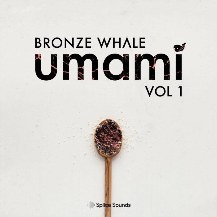 Splice Sounds Bronze Whale