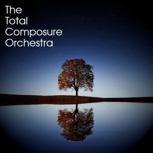 The Total Composure Orchestra Kontakt 5 Instruments Free