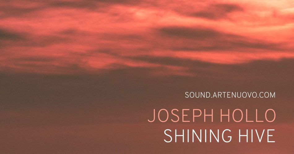 Joseph Hollo Shining Hive